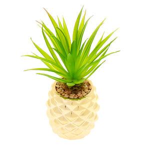 Pineapple Succulent Plant - Gold,