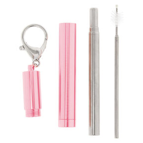 Collapsible Metal Straw Tube Keychain - Pink,