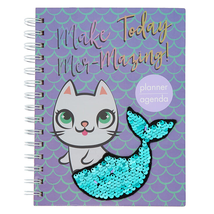 Image result for agendas claires