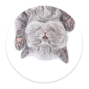 PopSockets Swappable PopGrip - Cat Nap,