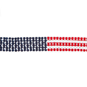 Mesh American Flag Choker Necklace,