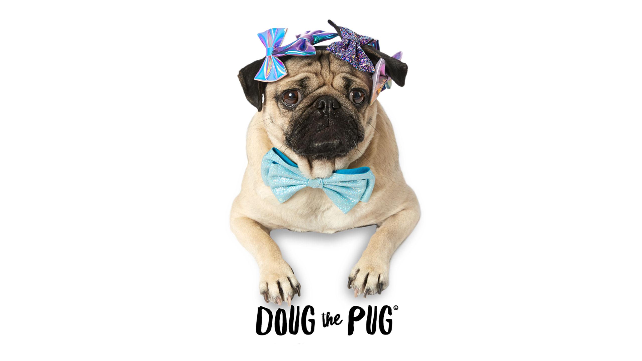 89321c8335c Watch Doug the Pug