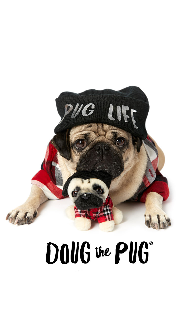 pug iphone 7 phone cases